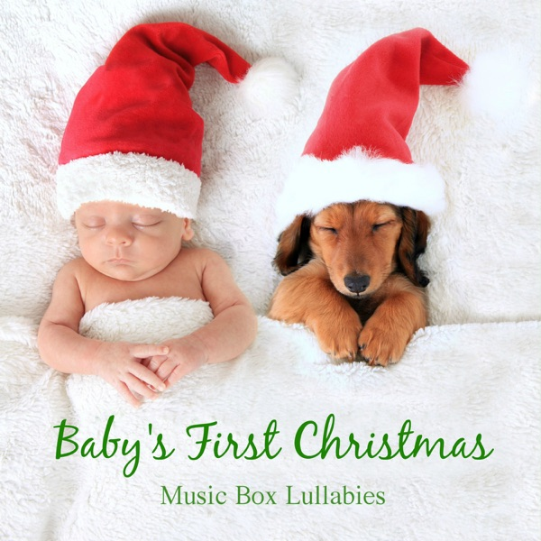 The Best 12 Days Of Christmas Download Mp3  Pics